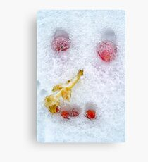 Vegetables And Fruit Snowman Face Canvas Print