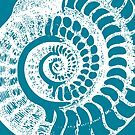 Spiral Shell with Math (blue) by funmaths
