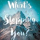 What's Stopping You? by Vin  Zzep