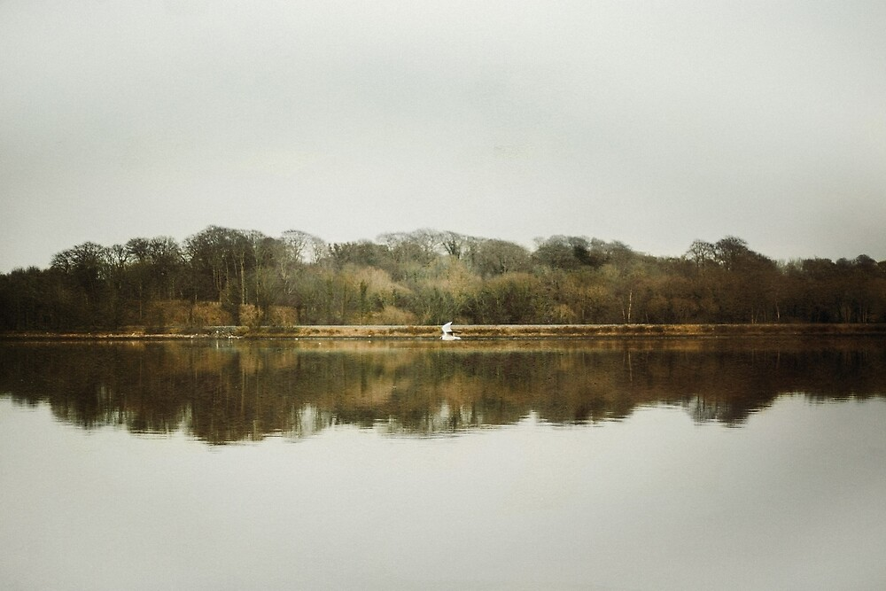 The River Foyle, Derry, Ireland  by wipphotography