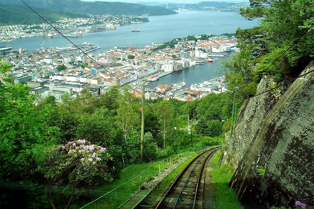 A view on Bergen - Norway by Arie Koene