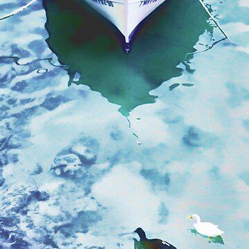 3 ducks by johnlynchstudio