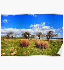 Hury Reservoir, TeesdaleHury Reservoir sits in Baldersdale in Upper Teesdale County Durham Poster
