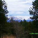 Pikes Peak from Cedar Mountain by Marie Smith