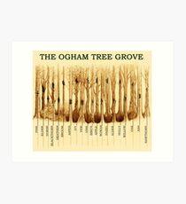 Ogham Tree Grove Art Print