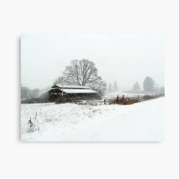 On The Way To White Canvas Print
