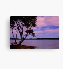 Late afternoon at The Sandon Canvas Print