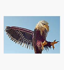 Eagle of vegetables Photographic Print