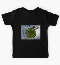 Beltany Stone Circle, Donegal Kids Tee
