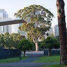 Carlton Gardens, Melbourne by Christina Norwood