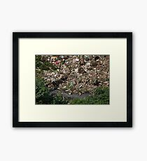 rubbish Framed Print