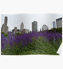 Growing City Poster