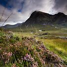 Scotland- Heather,wind and mountains by Angie Latham