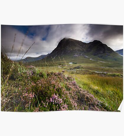 Scotland- Heather,wind and mountains Poster