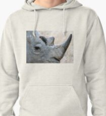 Will You Be My Friend? Pullover Hoodie