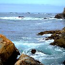 Carmel California Pacific Ocean by K D Graves Photography