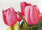Tulips For You by Ken Powers