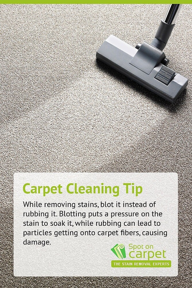 Carpet Cleaning Tip by spotoncarpetcle