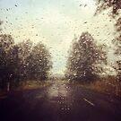 Road Trip... by Carol Knudsen