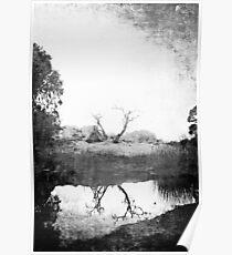 Carine Lake Poster