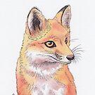 Fox by shiro
