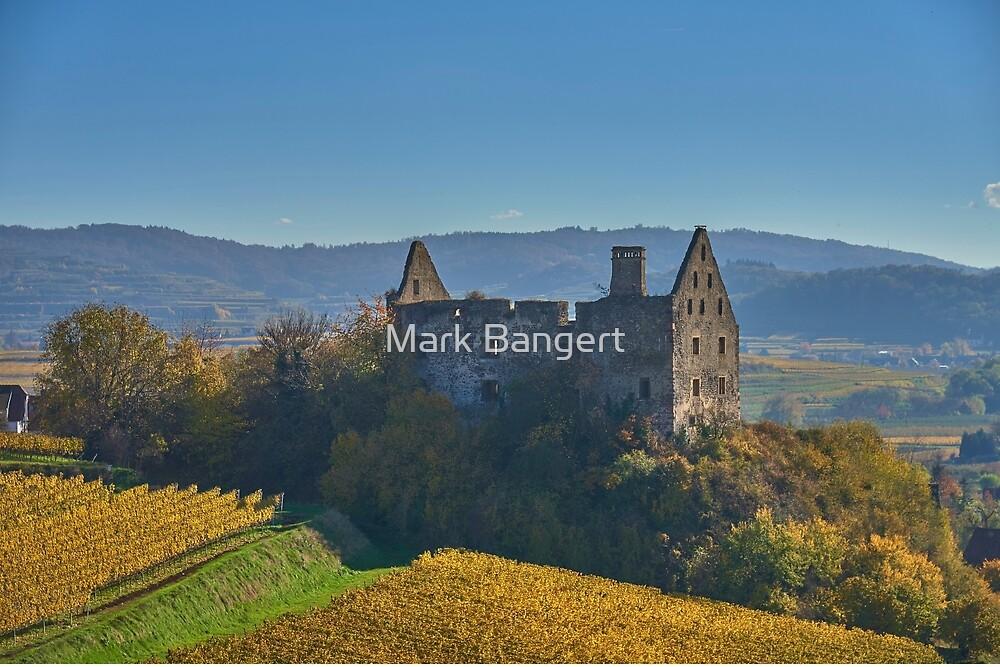Burkheim, Kaiserstuhl - another view of the castle by Mark Bangert