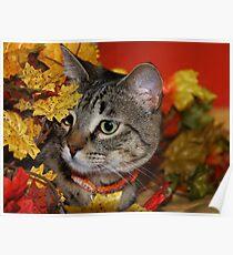 Tasha In The Leaves Poster