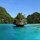 Islet at Wayag by Reef Ecoimages
