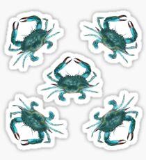 Pattern: Blue Crab Fest! Sticker