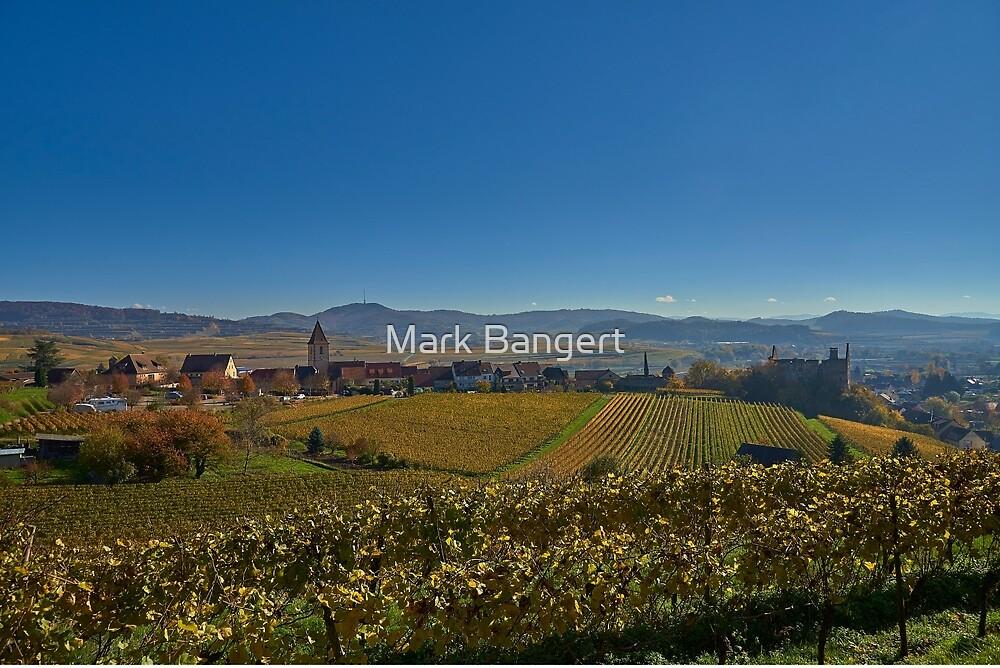 Burkheim, Kaiserstuhl - yet another view of the castle by Mark Bangert