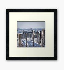 Project SNOWstorm Framed Print