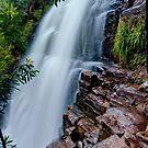 Fergusson Falls, Overland Track, Tasmania by Erik Schlogl