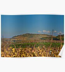 View of the Kaiserstuhl near Burg Sponeck Poster