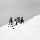trees in snow III by geophotographic