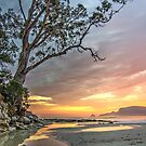 Two Tree Point, Adventure Bay HDR, Bruny Island, Tasmania by PC1134