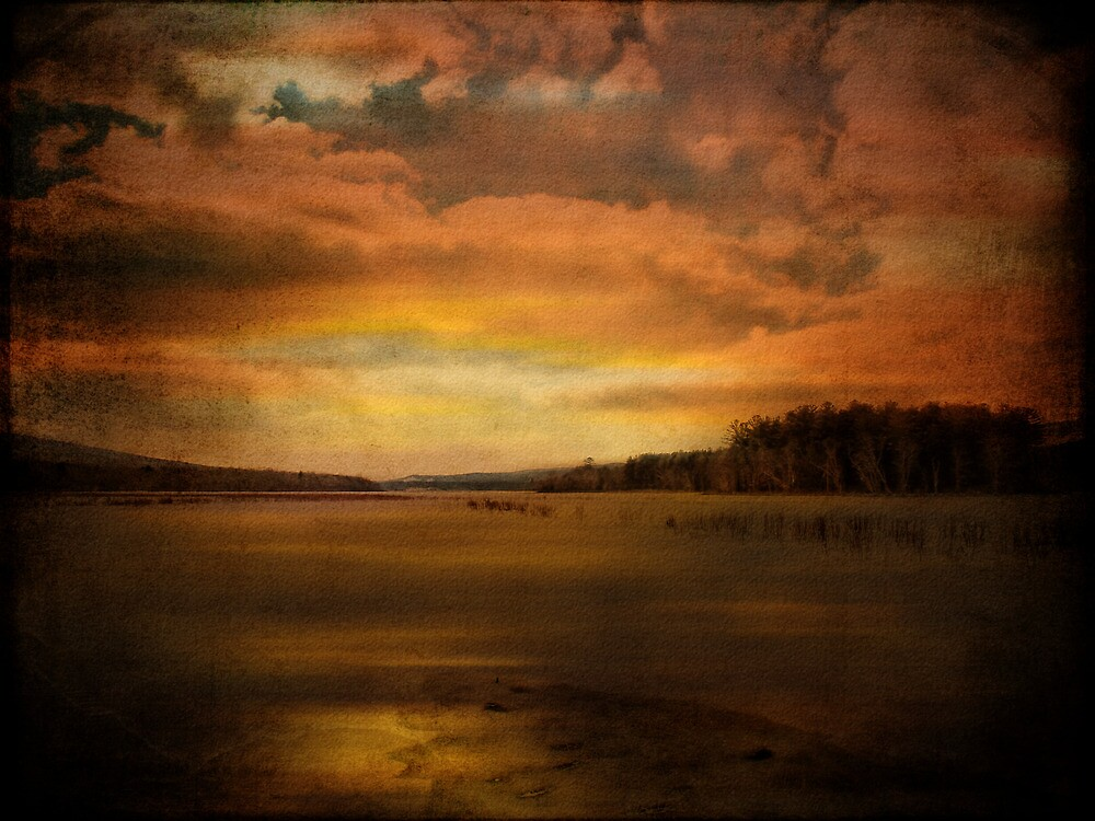 Winter Wetlands by PineSinger