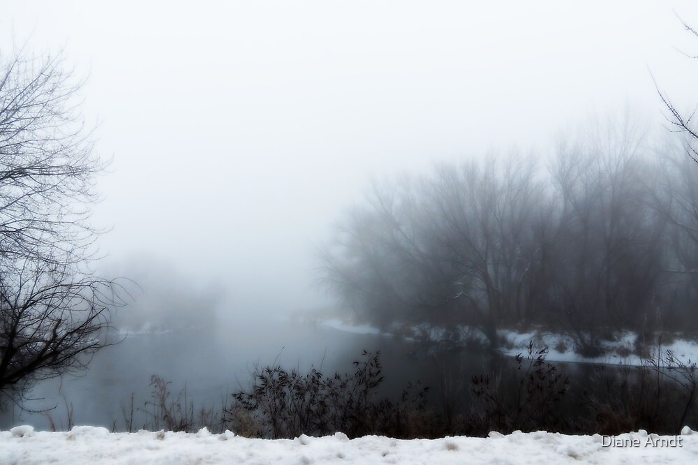 Light Fog On The Snake River...Caldwell, Idaho by Diane Arndt