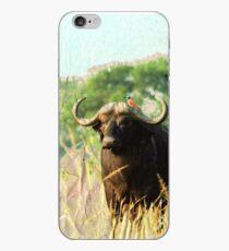 Wasserbüffel iPhone-Hülle & Cover