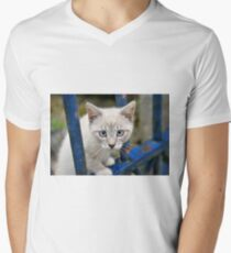 Kitten with blue eyes on the street T-Shirt