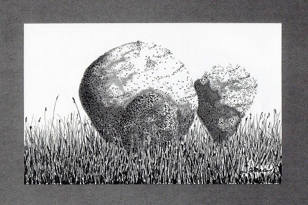 Boulders in the Grass by James Lewis Hamilton