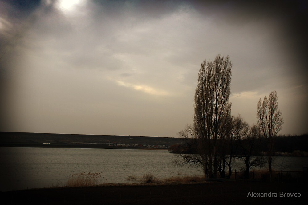 moody spring. by Alexandra Brovco