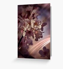 Blossoms with streaks of pink light Greeting Card