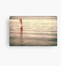 Standing alone in Homebush Canvas Print