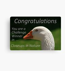 Banner Challenge  ...  Closeups in Nature Canvas Print