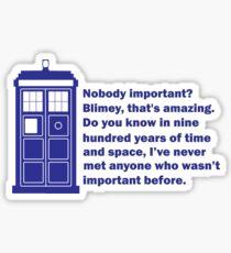 Nobody Important Dr. Who deisgn. Sticker