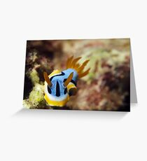 Nudi Greeting Card