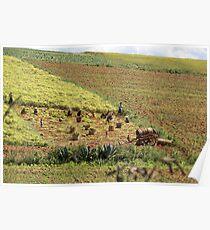 farming Poster