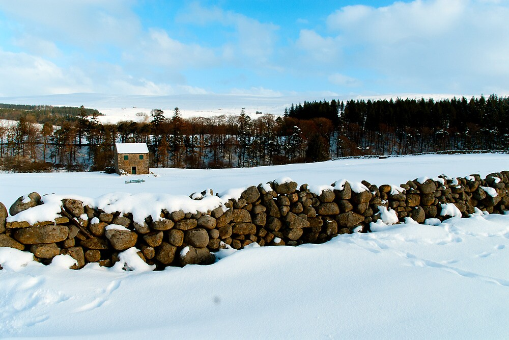 Teesdale by Stephen Smith