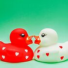 Kissing Ducks In Love von MMPhotographyUK