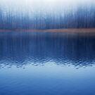 The Lake by Imi Koetz